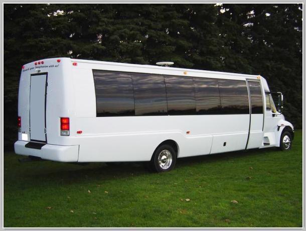 20-24 Passengers-partybus